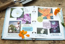 Scrapbooking / by Claire Aubel