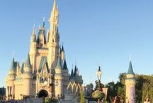 Best of Walt Disney World / Walt Disney World group board! Email becca@loveourcrazylife.com to join. Subject line: WDW Group Board. Best tips, reviews, and info on Walt Disney World from around the internet. Magic Kingdom, Animal Kingdom, Disney Springs, Hollywood Studios, and EPCOT