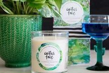 Cactus Face - Candle of the week / It is officially the first week of summer, the sun is hot as, the water is like a bath and the candle that reflects this time of year perfectly is Cactus Face by Coco Daydream.