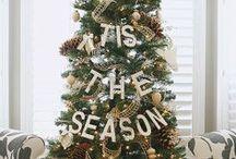 Christmas / by Allison Waken
