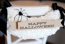 Halloween / by Allison Waken