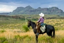 look west / I'm an equestrian outdoors-woman, who just has to follow the dirt road around the next rise. / by Tracy Duffy