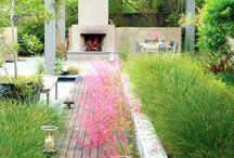 Gardens | How does your garden grow? / by Sarah Chudleigh