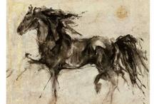 Equus / by Shari