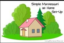 Montessori / by Melody Hanna