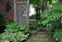 Outstanding Outdoors / Yard ideas