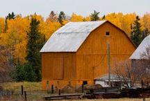 Barns, Cabins, Churches, Schools / by Jennifer M