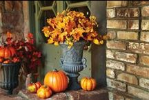 Holidays: Autumn, Halloween & Thanksgiving / by Stephanie Styles