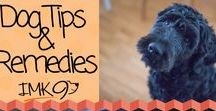 Dog Remedies / Homeopathic, natural, and over the counter dog tips and remedies and solutions for your pups ailments.
