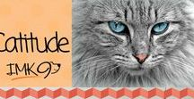 Catitude / Clever Quotes, Picture's, Stories, and Videos about Cats.