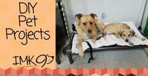 DIY Dog Projects For The Home / Super Cute and fun Do It Yourself Dog projects!