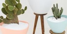 DIY / Home / DIY  Decorating / Creating Tips and Ideas