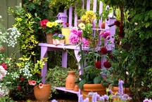 In My Garden / There is so much peace and beauty there! / by Carol Thomson