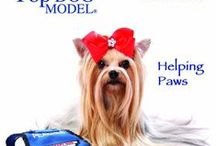 Things for Your Wall / Americas Top Dog Model Calendars: www.americastopdogmodel.com