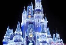 Disney World / by Denice Holt Jones