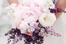 | bouquets |