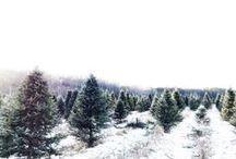 | let it snow |