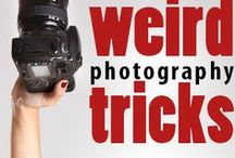 Photography / Here you will find tips and info about cameras and/or taking good photographs.