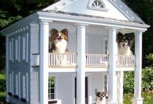 In the Dog House / Luxury Dog Houses