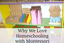 Montessori Style / by Hip Homeschool Moms