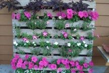 Pallets, Garden stuff. / Anything that I'm not sure where else to put. Pallet DIY.  Pretty stuff.