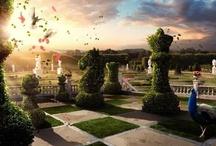 Gardens/ Backyards / by Sara Elizabeth Shillingford