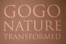Gogo: Nature Transformed / Our photos from the High Museum Exhibit