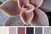 The Saguaro Suite / For Anya / Bedroom, sitting room, bathroom / Marsala and Blush on Charcoal and Sand