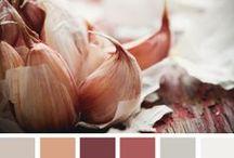 :: Color Scheme