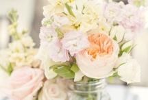Flowers and Plants / simply ♥ them | #flowers #flowerdecor #flowerdecoration #floraldecor #floraldecoration #bouquet #flowerarrangement #plants #roomplants