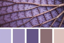COLORS: The Harmony / Use a few shades of the same color and not more than three different colors (no complementary colors!). Than the color combinations seem calm and harmonious.