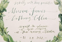 calligraphy / by Claire Ferguson