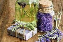 bylinky-zdravi-vyrobky-cviceni