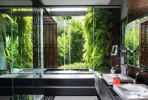 Bathrooms / by Janett Riebe