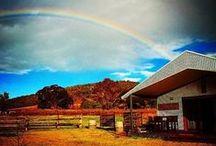Countryside retreats / by Stayz