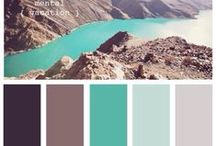 C O L O R / Colors that mix and match.  / by Kelsea Ann