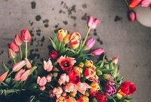 flower love / Schönes mit und aus Blumen