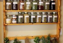 Herbs & Medicinal / by Carla Clifton