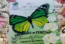 Butterfly Cards at Queen Babs