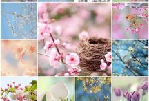 Spring mood / In the mood for spring.... Birds, eggs, pastels, lambs, flowers.