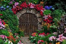 "Beautiful Landscaping / Landscaping can make a huge difference to the appearance of a home. It helps to enhance the features. The space, design and desired flowers and plants must be considered when landscaping your yard. Take a peek at some ""beautiful landscaping"" that is sure to grab your attention! #beautifullandscaping #landacaping #realestate"