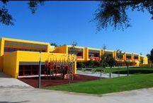 Architecture | Cultural & Educational Buildings / Architecture