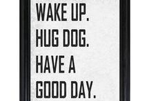 Have you hugged a dog today? / by Kalie Rickard