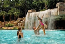 Hotels near Disney World in Orlando Florida / Unique, Boutique, & Luxury Hotels in Orlando, FL. Handpicked by the UWH staff!! UNIVERSALS HARD ROCK HOTEL, UNIVERSALS LOEWS PORTOFINO BAY HOTEL, THE WESTIN ORLANDO, THE RITZ-CARLTON ORLANDO GRANDE LAKES, SHERATON ORLANDO DOWNTOWN, WALT DISNEY WORLD DOLPHIN RESORT, WALT DISNEY WORLD SWAN, GRAND BOHEMIAN HOTEL, GAYLORD PALMS RESORT & CONVENTION CENTER, WESTGATE VACATION VILLAS -- All Hotels near Disney World