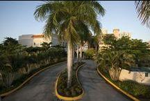 Top Hotels in Puerto Rico / Top Hotels in Puerto Rico including: EL SAN JUAN HOTEL & CASINO HILTON, CARIBE HILTON, LAS CASITAS VILLAGE, INTERCONTINENTAL SAN JUAN RESORT SPA AND CASINO, THE RITZ CARLTON SAN JUAN, RINCON BEACH RESORT, EL CONQUISTADOR RESORT, RIO MAR BEACH RESORT & SPA, HOTEL EL CONVENTO, CLUB MELIA AT GRAN MELIA PUERTO RICO, VILLA MONTANA BEACH RESORT, SAN JUAN MARRIOTT RESORT STELLARIS CASINO #PuertoRico