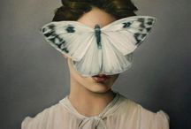 Moths (and Butterflies) / In which I gather together the dusty beauties that whisper from the walls.