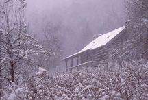 Winter. / by Ciara Brehony