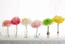 floral fantasy / by Rachel Pirie