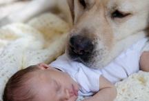 @ loving images!!!