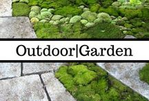 Outdoor & Garden / Get outside. Dig around. Grow food. Save money.  And make it beautiful.